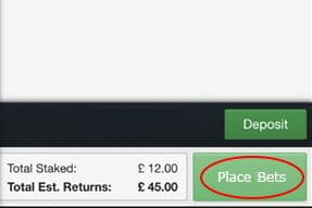 The last stage of the bet placement process - double check the bet and the wager amount and confirm