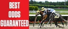 Best Price on Horse Racing Guaranteed