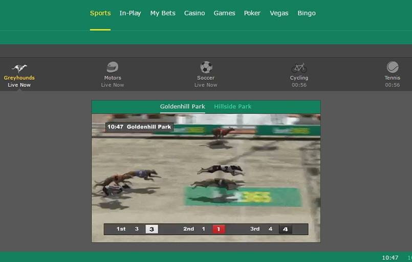 virtual greyhound betting with bet365