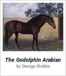 Goldophin Arabian - One of the first three stallions from which the modern day thoroughbred bloodstock is derived