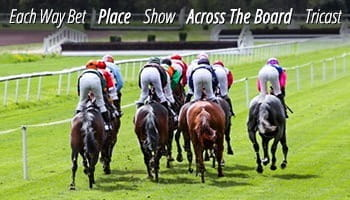 Common horse racing bet types include the Each Way Bet, the Place, the Show, Across the Board, and Tricast