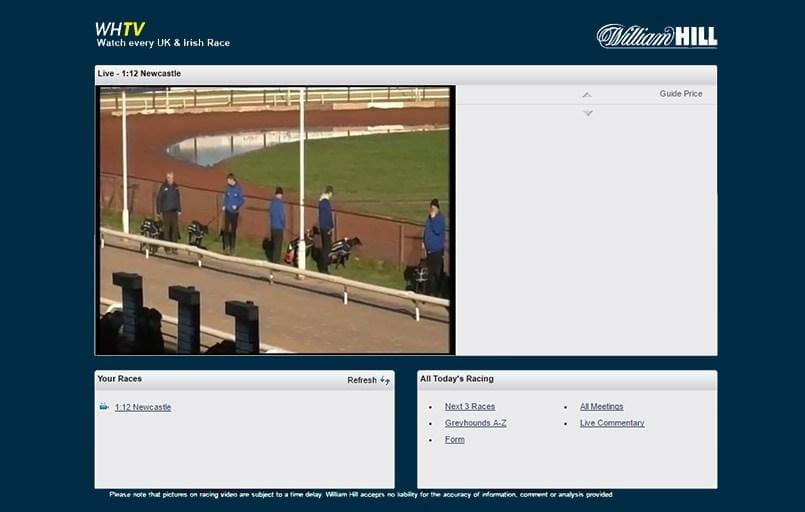 live streaming greyhounds with william hill