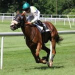 A jockey riding a horse