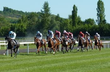 Horses during a race